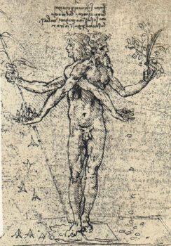 davinci-alegoria-placerii-si-a-durerii